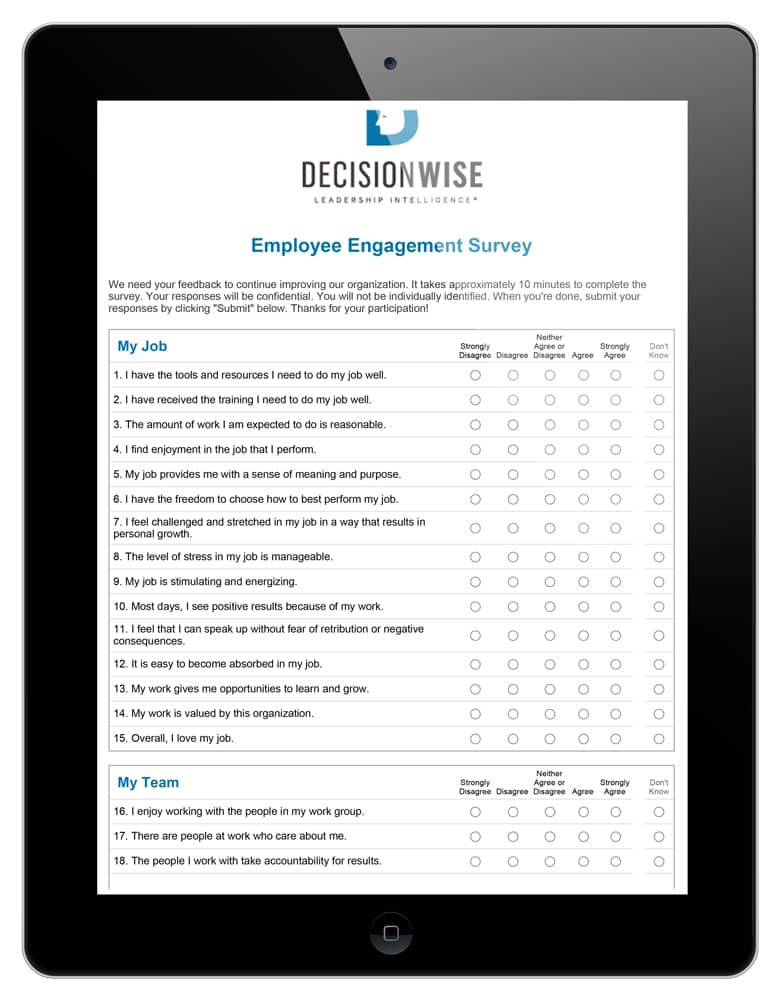 employee engagement surveys for large companies decisionwise. Black Bedroom Furniture Sets. Home Design Ideas