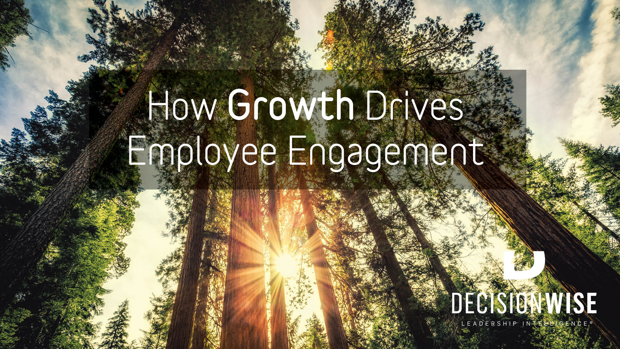 How Growth Drives Employee Engagement