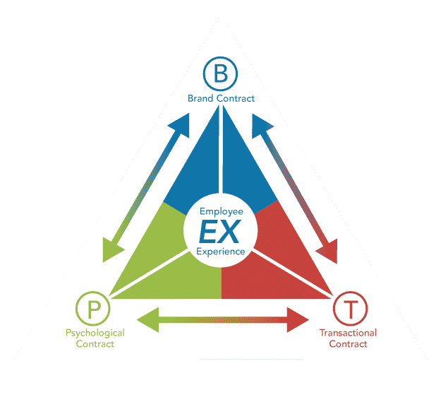 Employee Experience Triangle Model